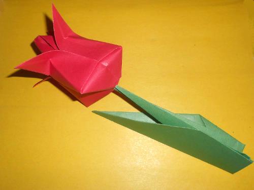 Цветы из бумаги.