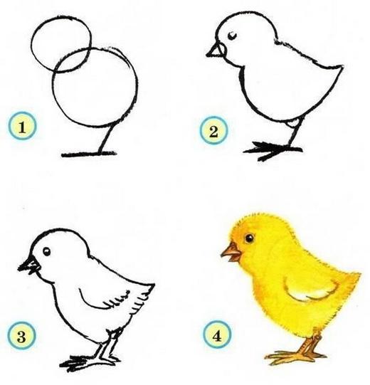 Нарисовать своими руками птицу